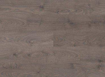 8096 San Diego Oak, Plank (GT)