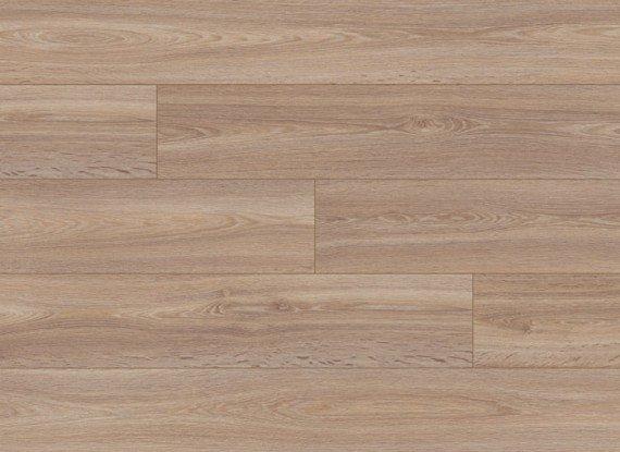 8199 Desert Oak, Plank (GT)
